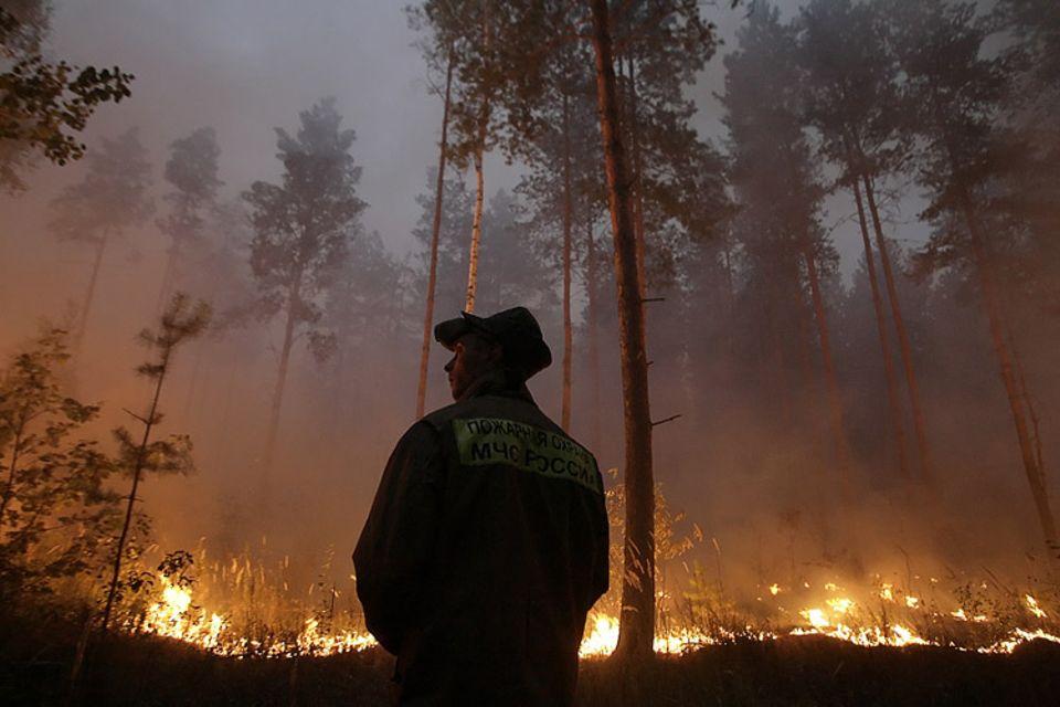 Der Klimawandel ist real: Etwa 26.000 Waldbrände verwüsteten in Russland in diesem Sommer mehr als 7600 Quadratkilometer Land