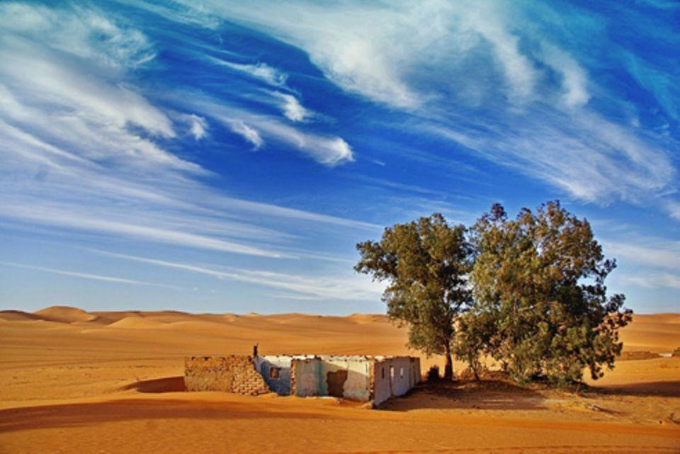 Schiebepuzzle: Nr. 249: Sahara