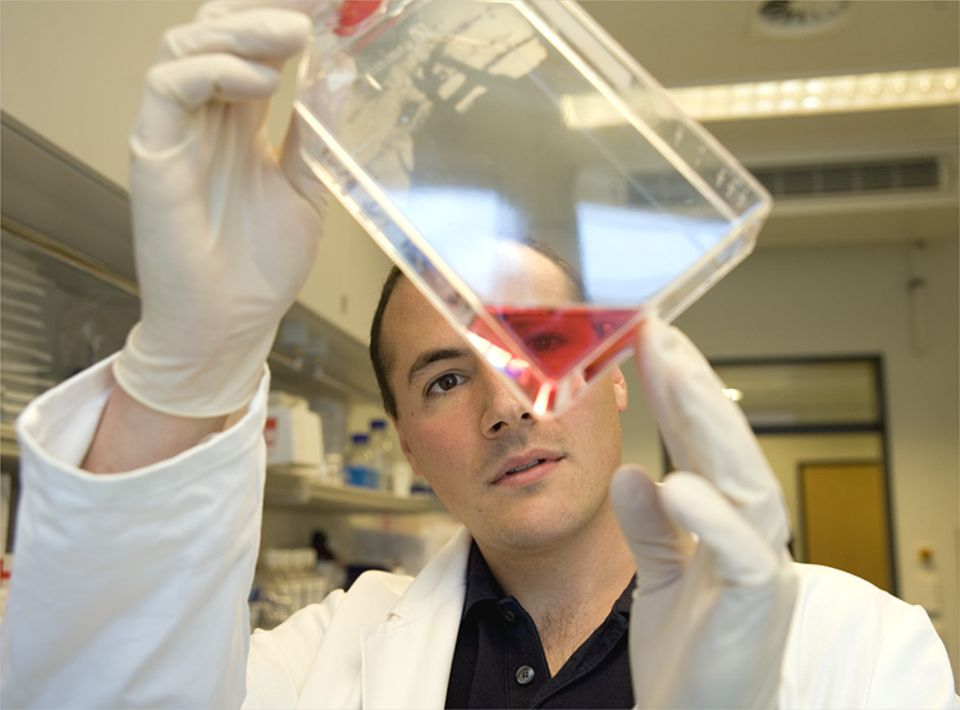 Aids: Der Hamburger Biologe Michael Schindler beschäftigt sich seit Jahren mit HI-Viren. Der 32-jährige zählt zu den bekanntesten Viren-Forschern Deutschlands
