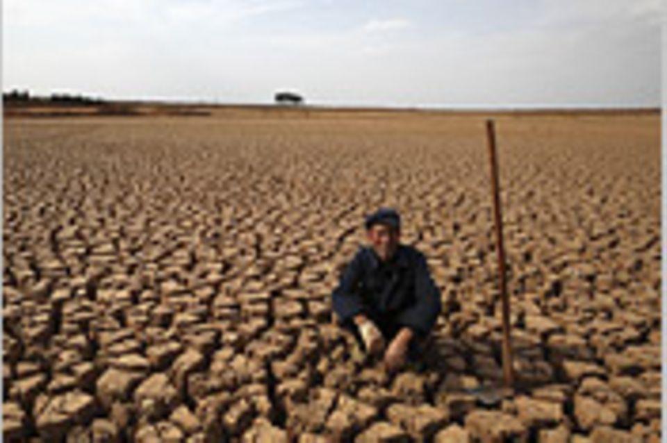 """UN-Klimakonferenz: """"Die Politiker nehmen das Risiko nicht ernst genug"""""""