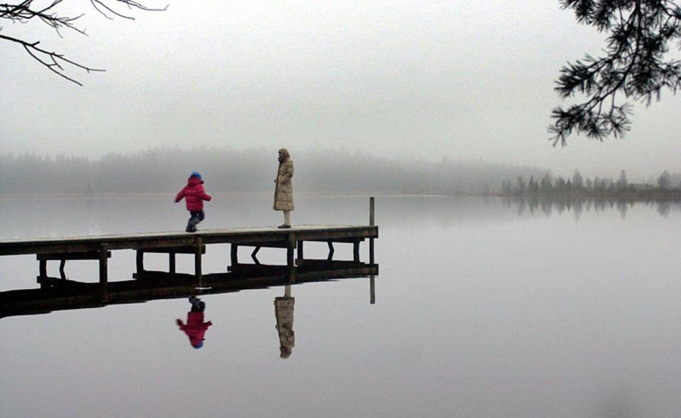 Natur: Über Gewässern entsteht im Herbst besonders schnell Nebel.