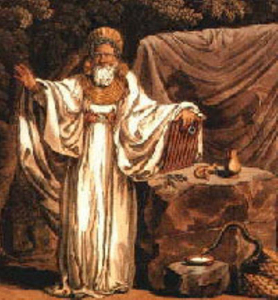 Kein selbst verfasstes Dokument kündet von ihrem Tun, keine Inschrift nennt ihre Namen. Doch sie waren die geistigen Führer der Kelten, arbeiteten als Lehrer und Richter, sprachen zu den Göttern und entschieden über Leben und Tod: die Druiden