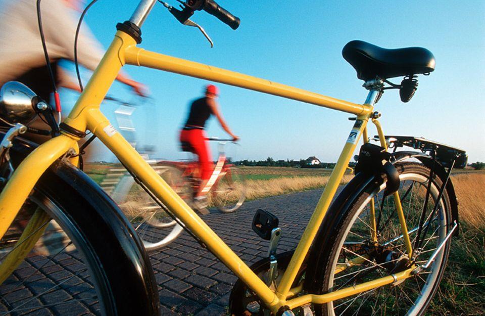 Aktivurlaub: Hiddensee erkundet man am besten mit dem Rad. Die ebenen Strecken eignen sich auch für Anfänger