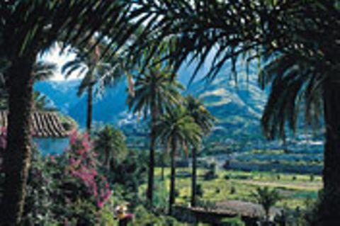 Gran Canaria: Entdeckung eines Kontinents