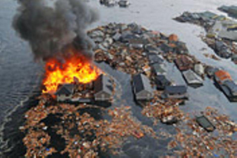 Erdbeben: Japan versinkt im Chaos