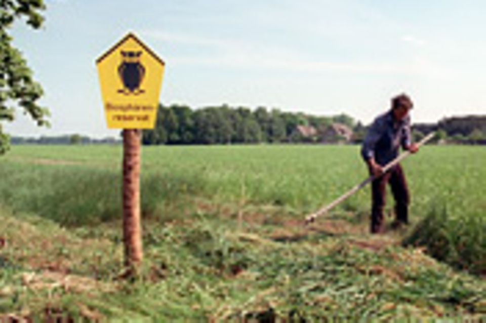 Ökologie: Artenschutz mit der Sense