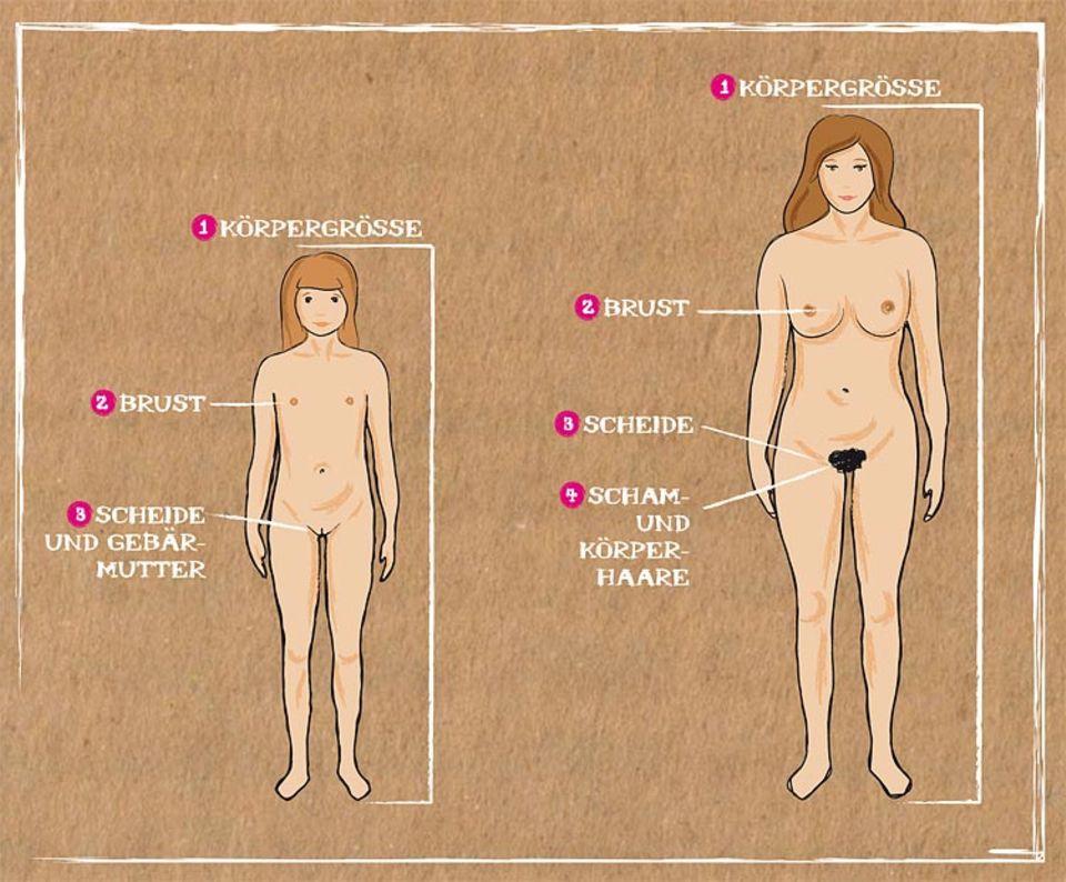 Pubertät: Wenn Kopf und Körper erwachsen werden