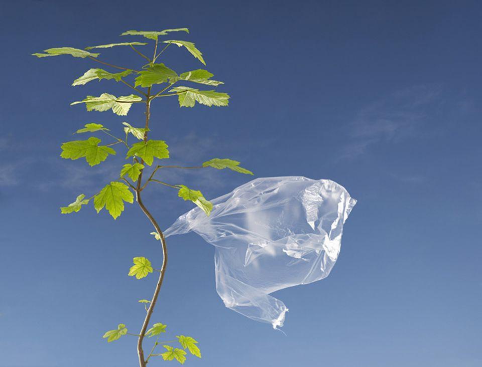 Pro Kopf verbrauchen die Bürger in der EU etwa 500 Plastiktaschen pro Jahr