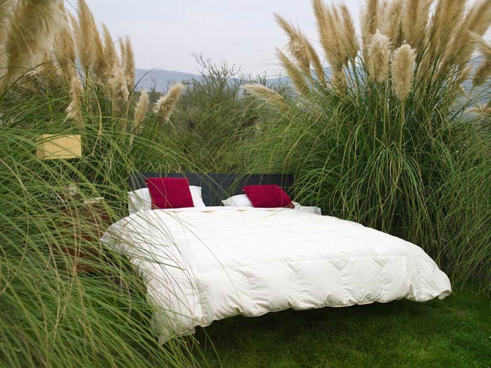 Grün reisen: Wer nicht im Freien schläft, muss sich selbst schlau machen, wie grün sein Hotel ist