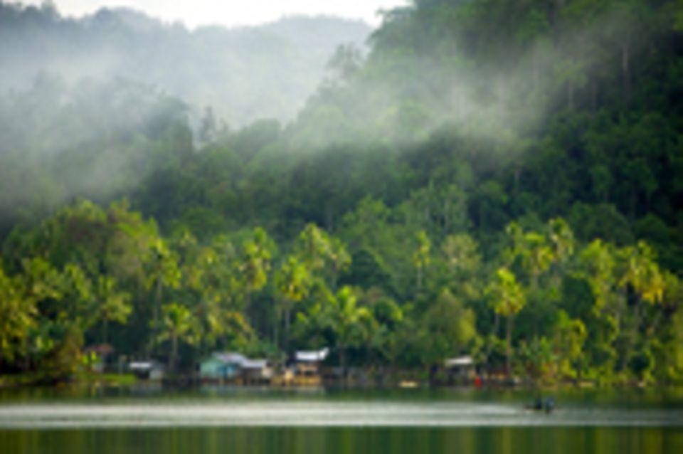 Entwicklung und Waldschutz auf Waigeo, West-Papua