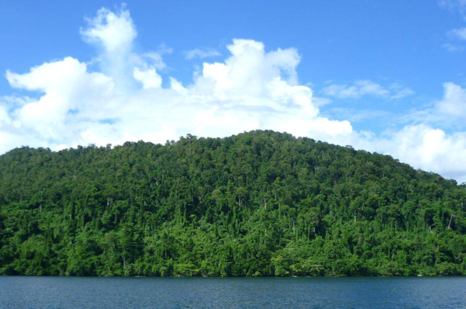 Noch bedeckt dichter Regenwald den größten Teil der Insel Waigeo