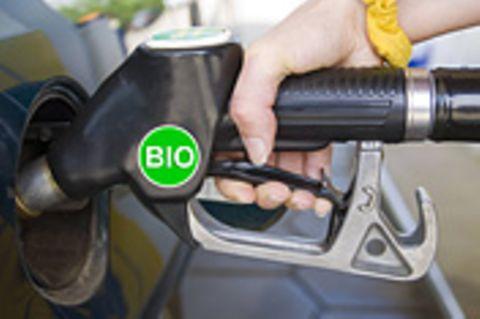 Biokraftstoffe: Zucker im Tank
