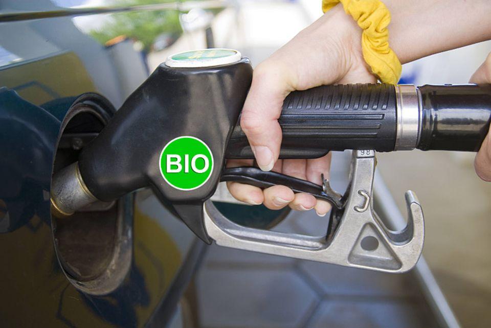 Biokraftstoffe: Umstrittene Energiealternative: Tanken mit Biosprit