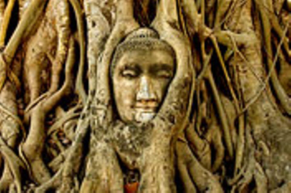 Thailand: Ayutthaya: Eine Stadt wie eine Insel