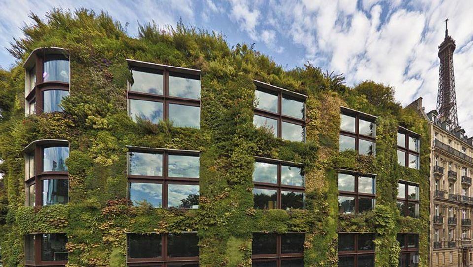 Gartenkunst: Die 1200 Quadratmeter große Fassade des Ethnologischen Museums in Paris: Hier sprießen weit über 100 Arten und Sorten