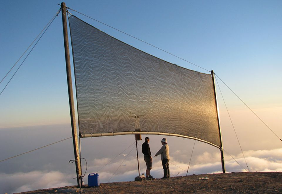 """Nebelforschung: Pro Tag lassen sich mit einem Nebelkollektor bis zu 170 Liter Wasser aus den Dunstschwaden """"melken"""""""