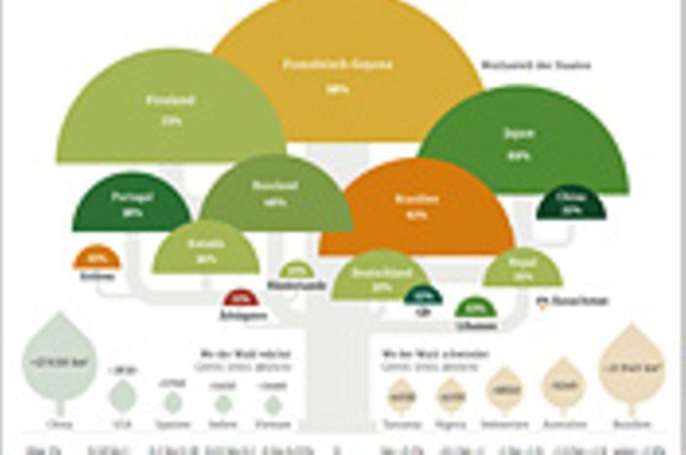 Weltspiel: Wie die Welt bewaldet ist