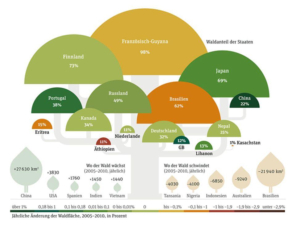 Weltspiel: Jährliche Änderung der Waldfläche, 2005-2010, in Prozent