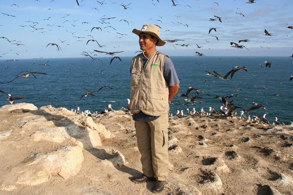 Juan Angeles de la Cruz ist Inselwächter auf der Guanoinsel Macabi. Er und ein Kollege bewachen die Insel, damit Räuber keine Chance haben, Guano, Vogeleier oder Seevögel zu stehlen oder zu töten