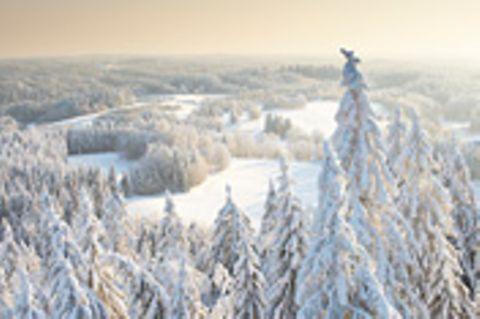 Estland: Winterreise vom Feinsten