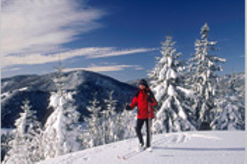 Wintersport: Entspanntes Brettern