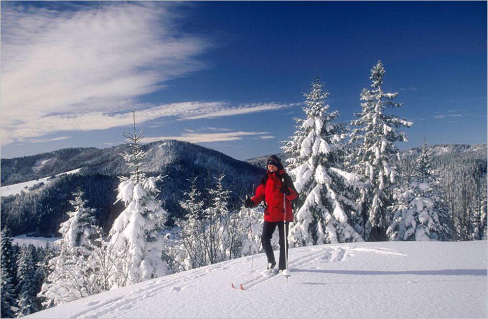 Auch mit Brettern unter den Füßen kann es im Skiurlaub ganz entspannt zugehen - und vor allem umweltfreundlich