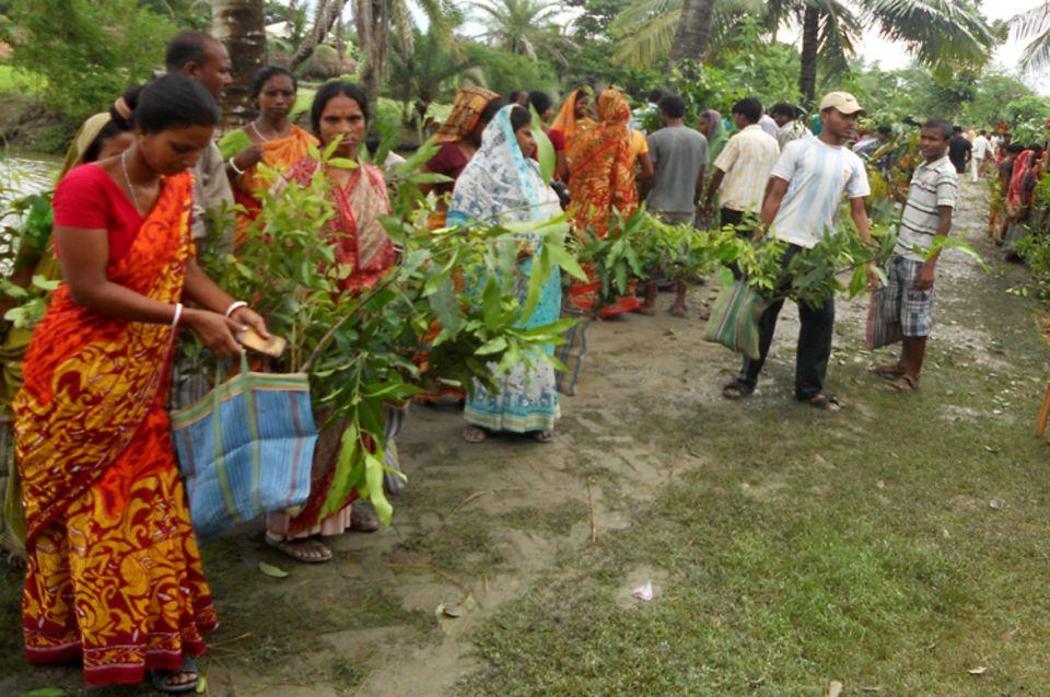 Indien: Inselbewohner erhalten Obstbäume und andere Nutzpflanzen zur Bepflanzung von Brachflächen