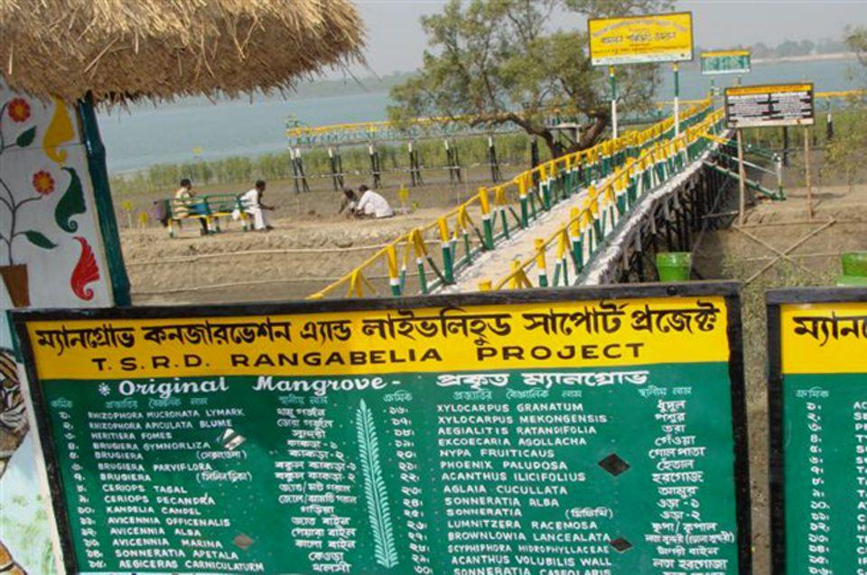 Indien: Die Tafel am Eingang des Besucherparks informiert über die verschiedenen Arten von Mangroven