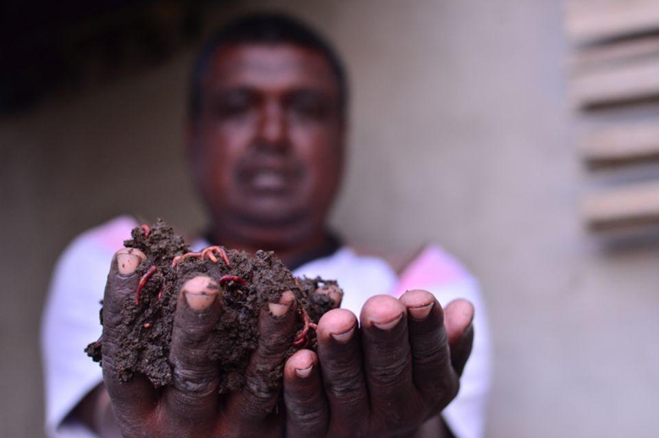 Indien: Wurmkompost aus eigener Herstellung