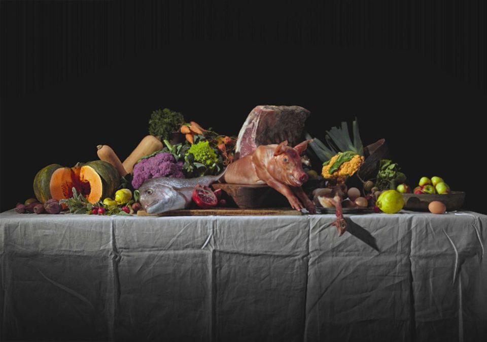 Um die Suche nach Essbarem zu erleichtern, erschlossen sich unsere tierischen Vorfahren verschiedenste Nahrungsquellen und wurden so zu Allesfressern. Auch Frühmenschen verspeisten Fleisch und Fisch ebenso wie Wurzeln oder Obst. Doch erfolgreich war nur, wer lernte, bekömmliche von giftiger Nahrung zu unterscheiden