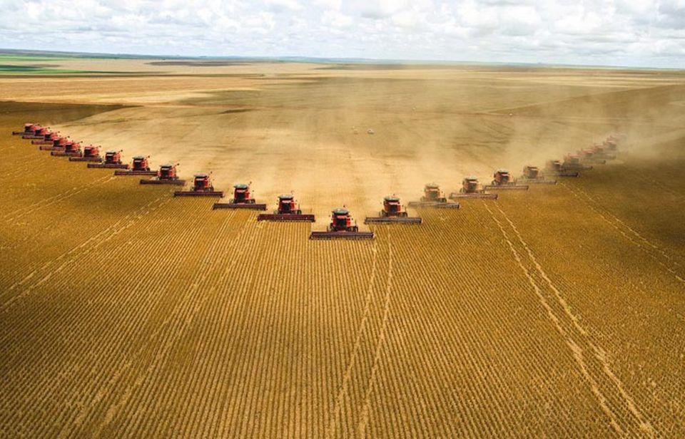 Eine Armada von 25 Maschinen erntet Soja in Brasiliens Bundesstaat Mato Grosso. Millionen Hektar solcher Felder liefern eiweißreiches Kraftfutter, um in Europa und China Fleisch billig, schnell und in großen Mengen produzieren zu können – mit schwerwiegenden Folgen für Mensch und Natur, denn solcheMonokulturen führen unter anderem zu vermehrter Bodenerosion, Verschmutzung des Wassers und Verlust der Artenvielfalt