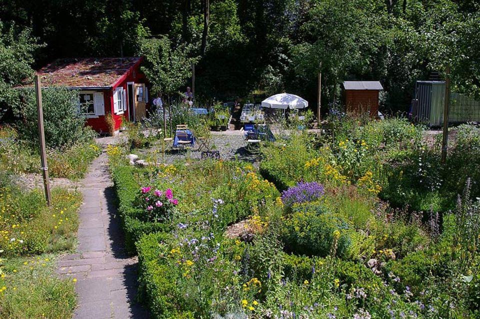 Naturgärten: Der Nabu Hamburg betreibt in Hamburg-Alsterdorf einen Naturgarten - zum Ansehen und Mitmachen