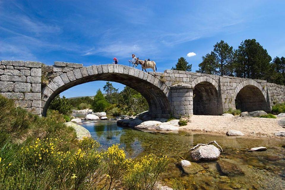 """Eselsbrücken: Weil Esel Wasser vermeiden, baut man ihnen Brücken. Und weil sich Menschen Dinge manchmal schwer merken können, brauchen sie ähnliche """"Brücken"""" - Eselsbrücken"""