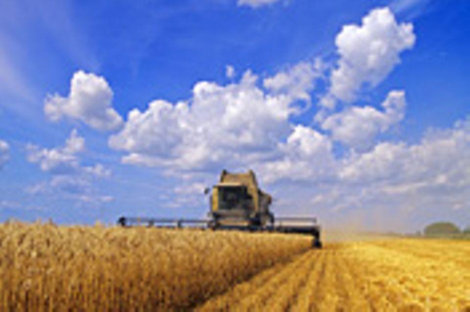 Alternative Agrartechnik: Alternative Agrartechnik: Der Dorfbaukasten