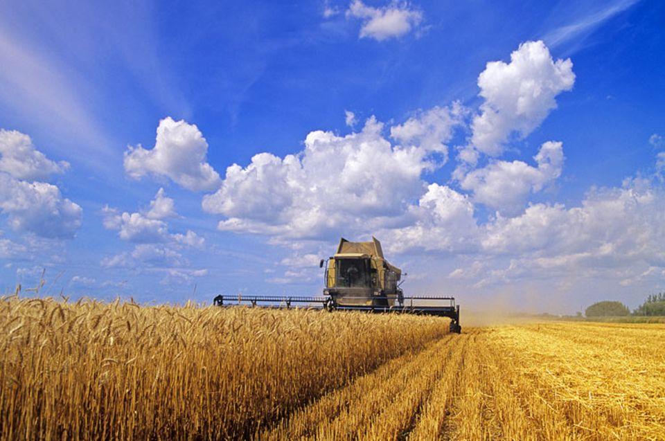 Alternative Agrartechnik: Marcin Jakubowski hat sich der alternativen Agrartechnik angenommen