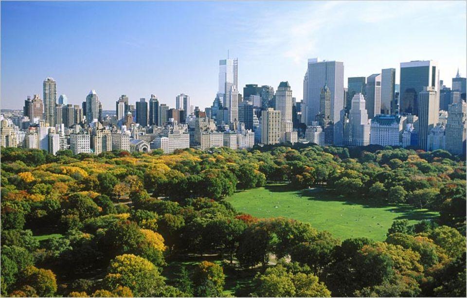 Im Central Park gibt es verschiedene kostenlose Führungen zu Geschichte, Ökologie, Landschaftsarchitektur und Kunst