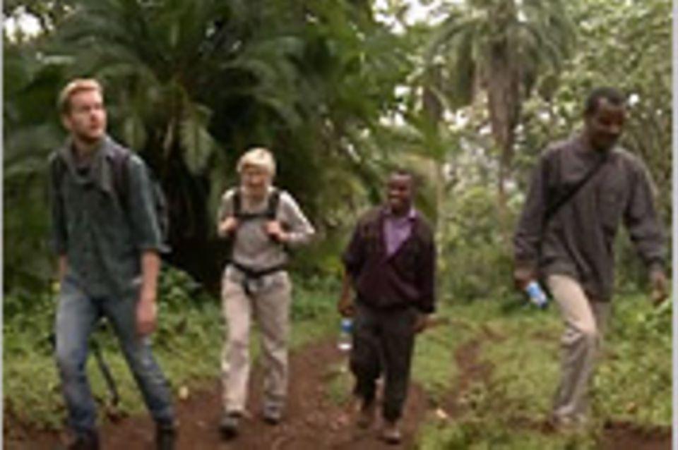 Fairer Handel: Regenwald-Kaffee