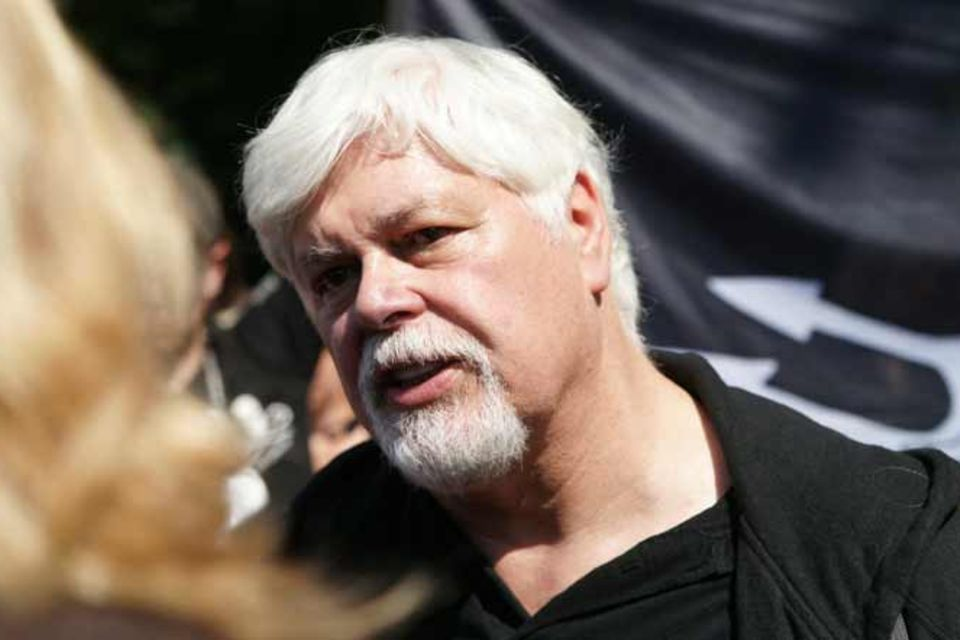 """Umweltaktivisten: Sea-Shepherd-Chef Watson: """"Es geht um eine Menge Geld"""""""