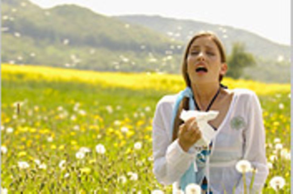 Allergien: Was Sie über Allergien wissen sollten