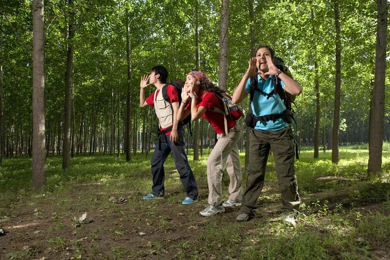 Redewendung: Wenn man in einen Wald hinein ruft, schallen die Worte zurück. So wie ihr also in den Wald hineinruft, schallt es auch wieder zu euch heraus