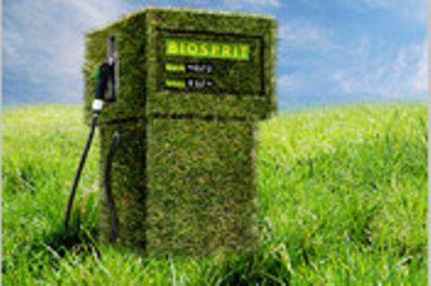 Die Bioenergie-Falle