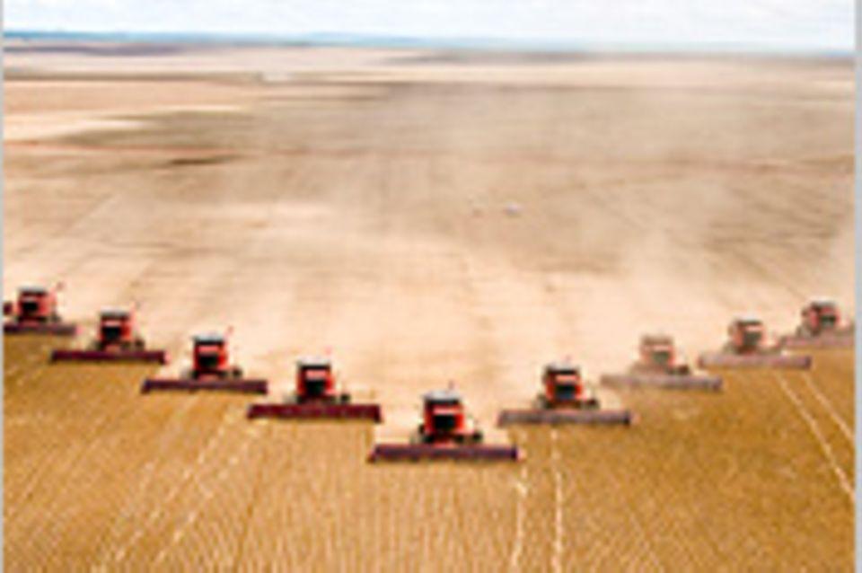 Lebensmittelproduktion: Die Industrie, die uns satt macht