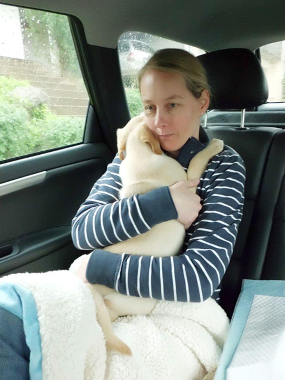 Hier seht ihr Willow mit seiner Besitzerin. Die beiden haben eine sehr enge Bindung