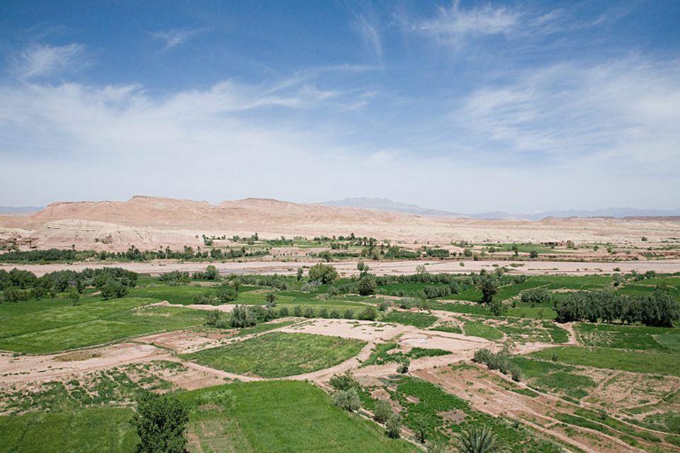 Grünanlagen in der Wüste - hier in Marokko - haben globale Folgen