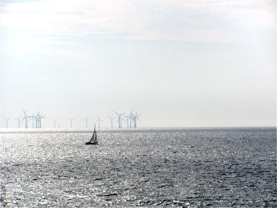 Schon von weitem sieht man die langen Reihen Windräder