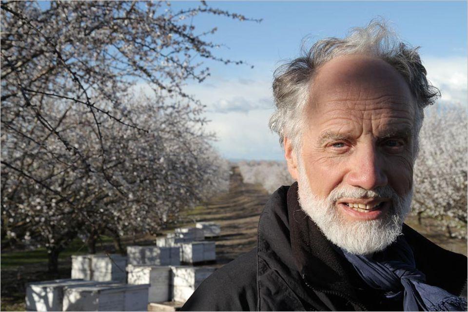 Umweltschutz: Markus Imhoof bei den Dreharbeiten auf einer kalifornischen Mandelplantage
