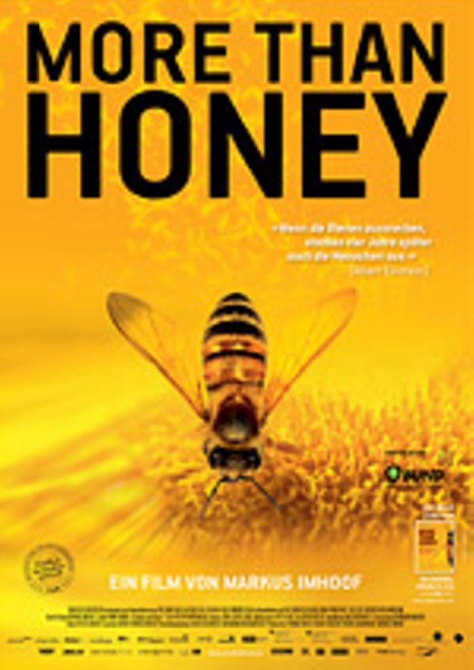 """Umweltschutz: Filmstart von """"More Than Honey"""" ist der 8. 11."""
