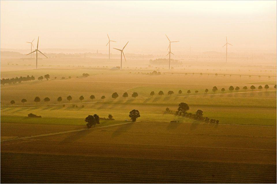 """Umweltpolitik: """"Immer, wenn wir neue Netze verlegen, um Strom für Phasen ohne Wind und Sonne zwischenzuspeichern, werden Anwohner rebellisch"""", meint Ortwin Renn"""