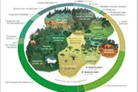 Weltspiel: Der Kontinent der Schutzgebiete