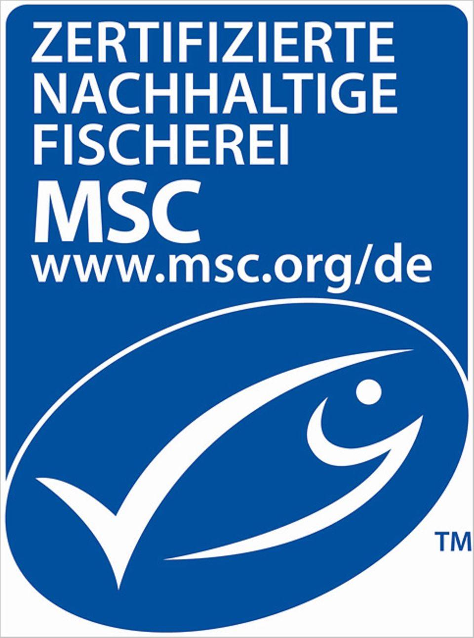 Fischereipolitik: Fischkonsum ohne Ende?